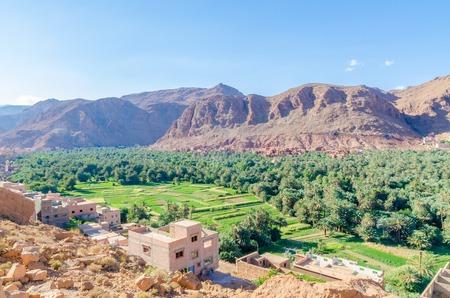 Todra 협곡, 모로코, 북 아프리카에서 건물과 산들과 아름 다운 무성 한 녹색 오아시스
