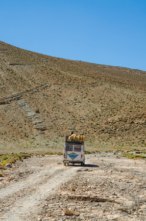 Many sheep being transported on roof of old van on rough track through the Atlas mountains, Morocco, North Africa