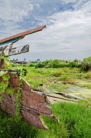 Colorful overgrown and broken wooden fishing boat in lush environment at coast of Gambia, West Africa
