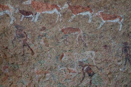 詳細なブッシュマンやサン ロック レディー ホワイト パネル、Brandberg、ダマラランド、ナミビア、南アフリカでの絵 写真素材