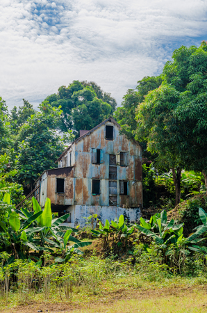 Abandoned and fading house surrounded by forest and banana trees, traces of civil war, Robertsport, Liberia, West Africa