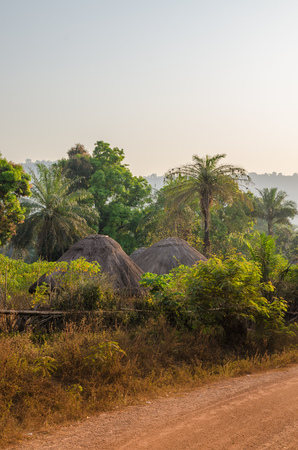 Traditional thatched round huts of Guinea Bissau hidden among trees and palms at gravel road during sunset, West Africa
