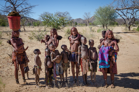 Group or family of Himba or Muhimba tripe people in savannah