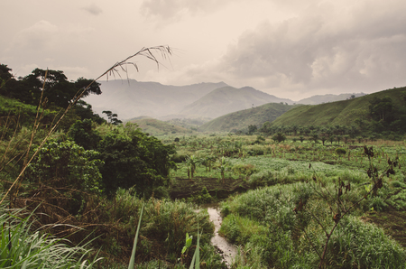River, plantations, mountains and lush green tropical vegetation on overcast day at Ring Road, Cameroon, Africa Reklamní fotografie