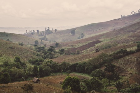 Dramatic landscape of fields and farms in highlands of Ring Road region, Cameroon, Africa