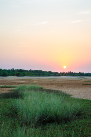 Tranquil sunset over wetland with green grass in rural area of Guinea Bissau, Africa