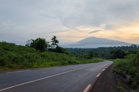Scenic view of Mount Cameroon mountain with green forest during sunset, highest mountain in West Africa, Cameroon, Africa. Reklamní fotografie