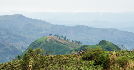4x4 vehicle in rolling fertile hills with fields and crops on Ring Road of Cameroon, Africa.