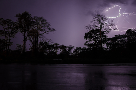 Lightning strikes during dramatic thunderstorm with silhouettes of trees and rain forest, Cameroon, Africa.