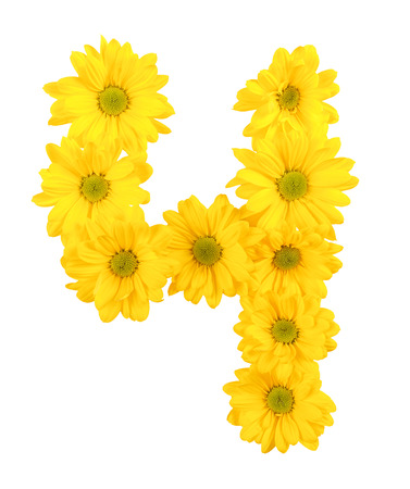 cipher: yellow chrysanthemum is number and symbol on a isolated background.