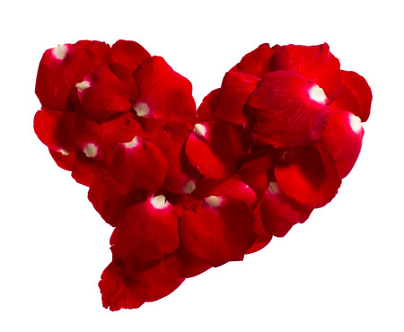 heartiness: Rose petals shape is heart on white background. Give rose to darling in valentine