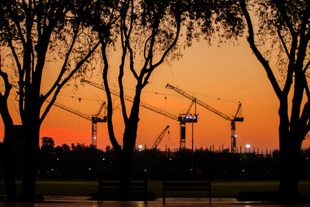 purge: Construction in morning. Sky color is orange. Tree and crane  silhouette is frame.