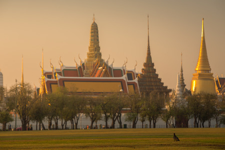 alone bird: Bird is alone and background is Wat Phra Kaew  in morning. Stock Photo