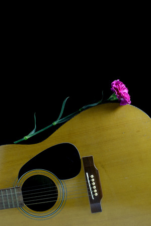 avocation: Flower carnation and Guitar.