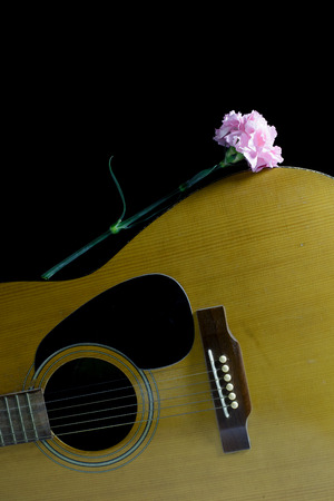 concave: Flower carnation and Guitar. Sound of music and beautiful of nature.