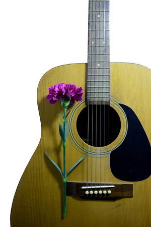 avocation: Flower carnation and Guitar. Sound of music and beautiful of nature.
