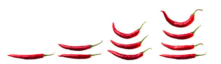 Red chili on isolated background. photo