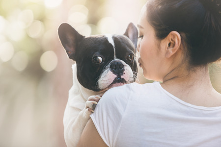 bulldog: Bulldog francés es linda chica besos. Ella lleva en un perro.