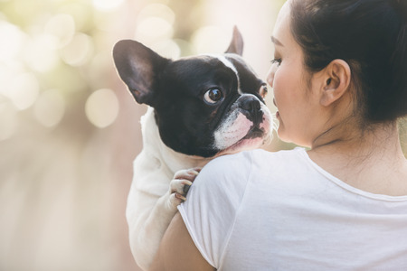 french woman: French bulldog is cute kissing girl. She carry on a dog.