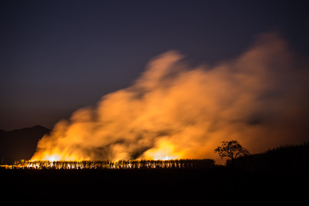 wildfire: Burnt the farm or wildfire in the dusk. It make air pollution and greenhouse effect.