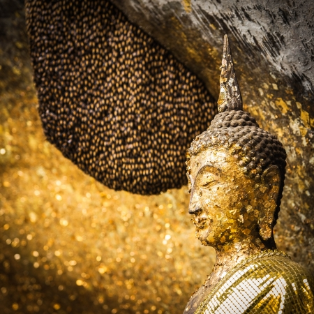 Golden buddha image was patched with golden sheet and near the big honeycomb above  Stock Photo - 17450810