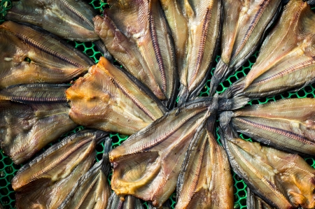 conservacion alimentos: Secado peces, el secado es una de las t?cnicas m?s antiguas de conservaci?n de alimentos, lo que reduce la actividad de agua suficientemente para prevenir el crecimiento bacteriano. Foto de archivo