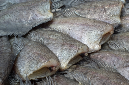 sufficiently: Drying fishes, drying is one of the most ancient food preservation techniques, which reduces water activity sufficiently to prevent bacterial growth. Stock Photo