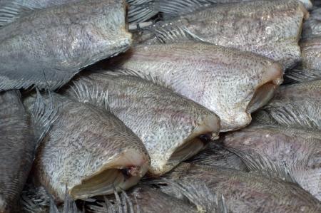 conservacion alimentos: Secado peces, el secado es una de las t�cnicas m�s antiguas de conservaci�n de alimentos, lo que reduce la actividad de agua suficientemente para prevenir el crecimiento bacteriano.