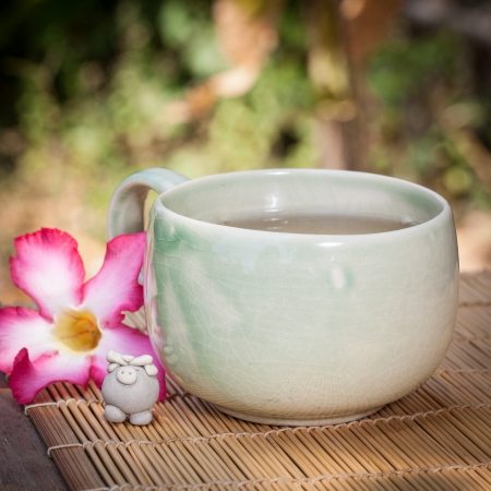 Green tea cup in the garden with pink flower photo