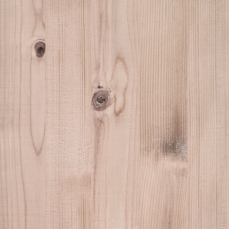 Texture of wood photo