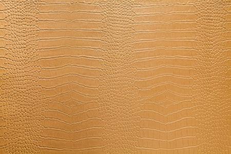 Snake skin texture Stock Photo - 22533008