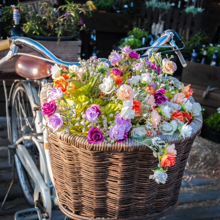 Vintage bicycle has beautiful colorful flowers in a basket on the front of the bike. Stock Photo
