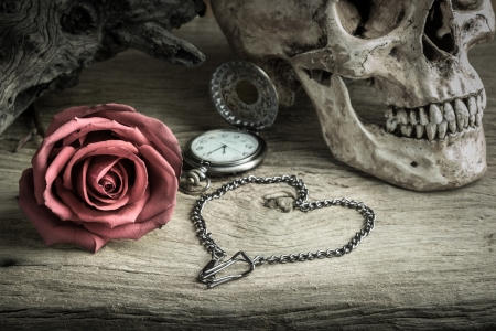 Still life with human skull with red rose bud ,metal chain in heart shape and pocket watch photo
