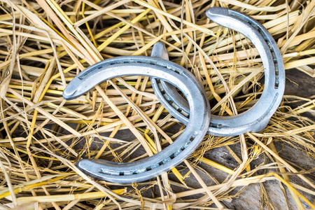 Horse shoes on wooden table photo