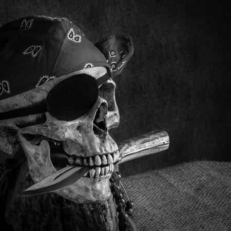 Still life, pirate skull with knife in the mouth