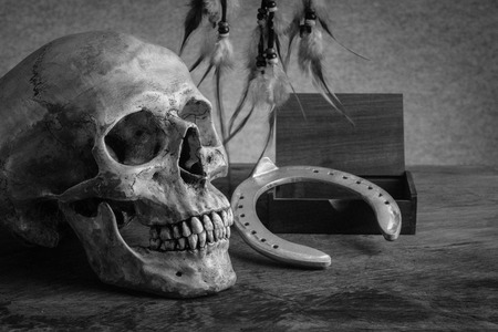 Still life with human skull horseshoe and dream catchers photo