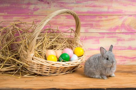 Funny little rabbit among Easter eggs in velour grass photo