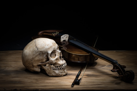 Still life with human skull and violin
