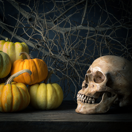 Still life with human skulls and pumpkins in barn photo