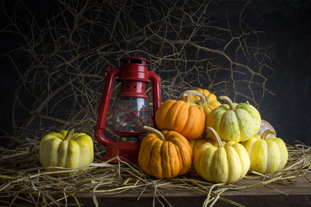 Still life with pumpkins in barn photo