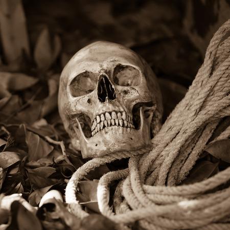 nightmarish: Still life with human skull with old rope on ground floor