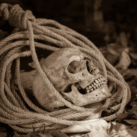 nightmarish: Still life with human skull with old rope on ground floor