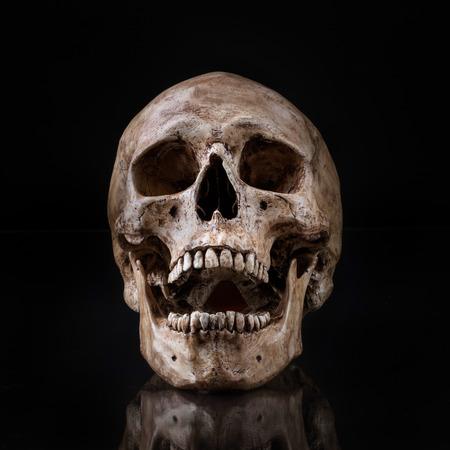 vooraanzicht van de menselijke schedel open mond te reflecteren op geïsoleerde zwarte achtergrond