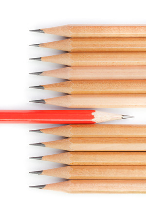 two visions: Concept different thinking, presented by red pencil and brown pencils in row