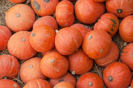 minature: stack of orang pumpkin on the floor