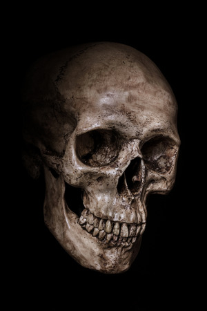 Side view of human skull on isolated black background