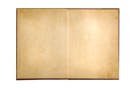 diary page: open old book on white background