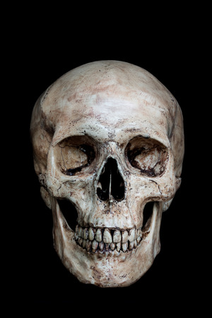 Front side view of human skull on isolated black background