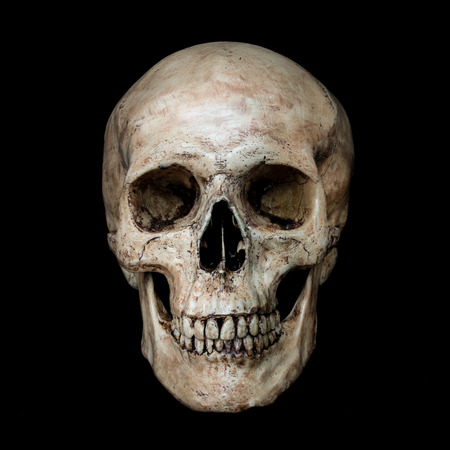 human head: Front side view of human skull on isolated black background