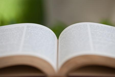 vacance: libro aperto su un tavolo di legno in natura, verde sfondo sfocato
